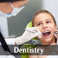 By Industry (Dentistry)