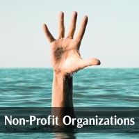 By Industry (Non-Profit Organizations)
