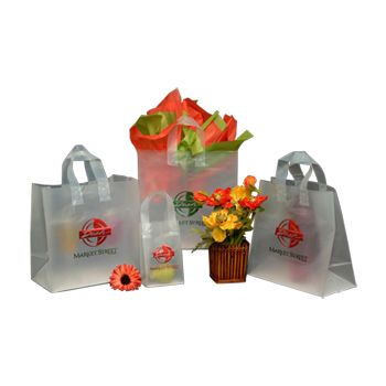 Imprinted Frosted Soft Loop Bags - Econo