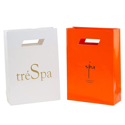 Imprinted Die Cut Laminated Bag