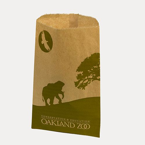 Custom Paper Merchandise Bags - thumbnail view 5